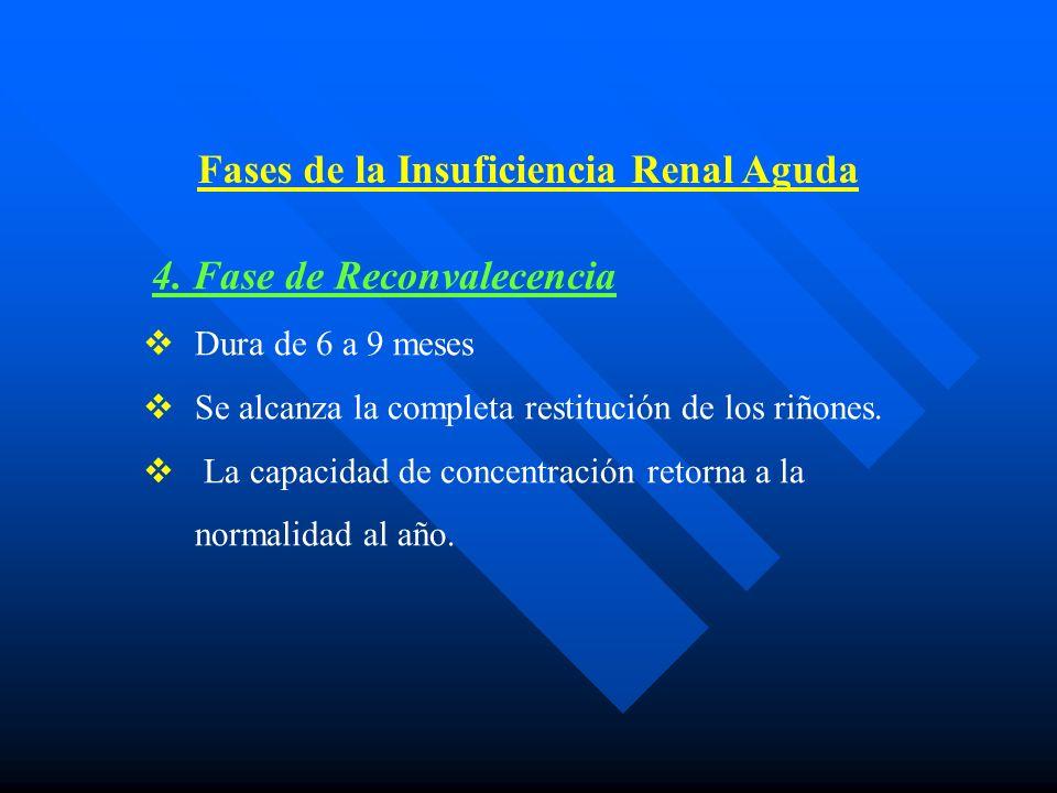 4.Fase de Reconvalecencia Dura de 6 a 9 meses Se alcanza la completa restitución de los riñones.