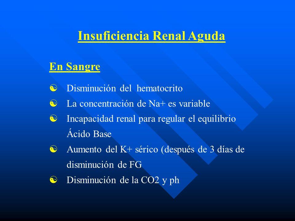 Insuficiencia Renal Aguda En Sangre Disminución del hematocrito La concentración de Na+ es variable Incapacidad renal para regular el equilibrio Ácido Base Aumento del K+ sérico (después de 3 días de disminución de FG Disminución de la CO2 y ph