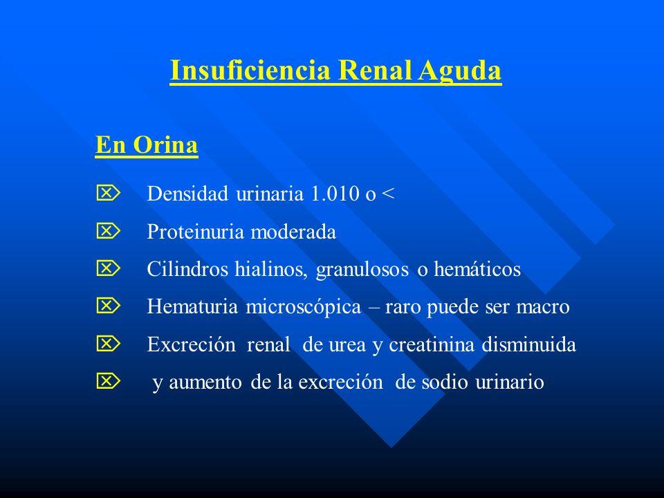 Insuficiencia Renal Aguda En Orina Densidad urinaria 1.010 o < Proteinuria moderada Cilindros hialinos, granulosos o hemáticos Hematuria microscópica – raro puede ser macro Excreción renal de urea y creatinina disminuida y aumento de la excreción de sodio urinario