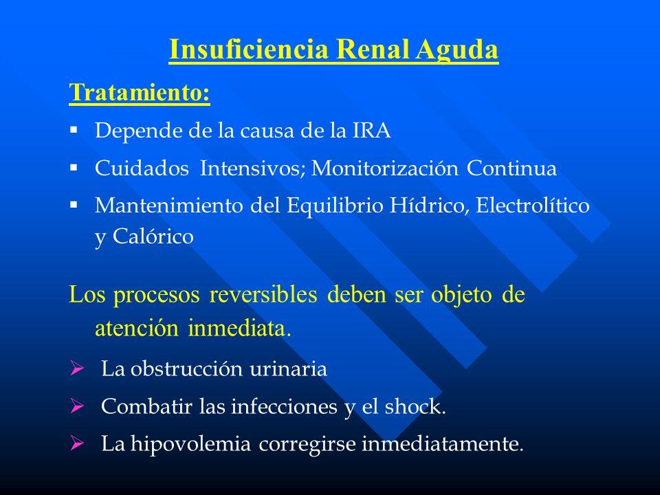 Insuficiencia Renal Aguda Tratamiento: Depende de la causa de la IRA Cuidados Intensivos; Monitorización Continua Mantenimiento del Equilibrio Hídrico, Electrolítico y Calórico Los procesos reversibles deben ser objeto de atención inmediata.