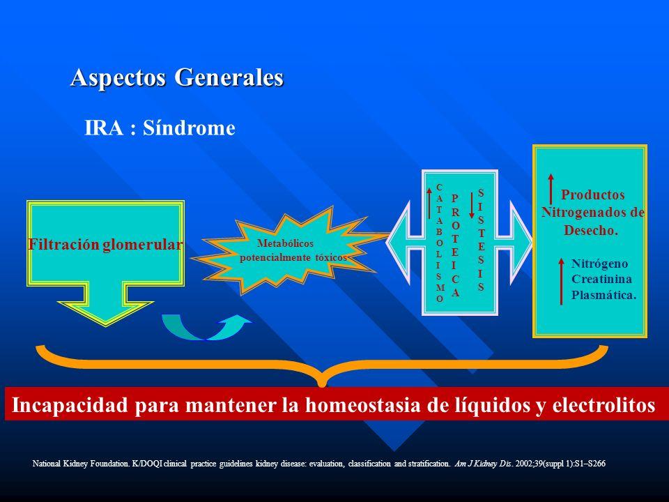 Filtración glomerular Metabólicos potencialmente tóxicos CATABOLISMOCATABOLISMO SISTESISSISTESIS PROTEICAPROTEICA Productos Nitrogenados de Desecho.