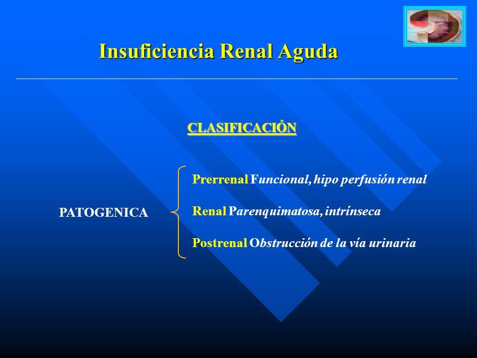 Insuficiencia Renal Aguda CLASIFICACIÓN CLASIFICACIÓN Prerrenal Funcional, hipo perfusión renal Renal Parenquimatosa, intrínseca Postrenal Obstrucción de la vía urinaria PATOGENICA