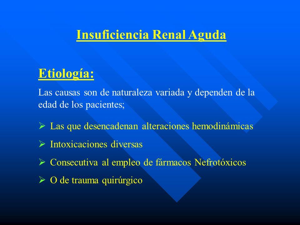 Insuficiencia Renal Aguda Causas de Insuf.Renal Aguda en el R.