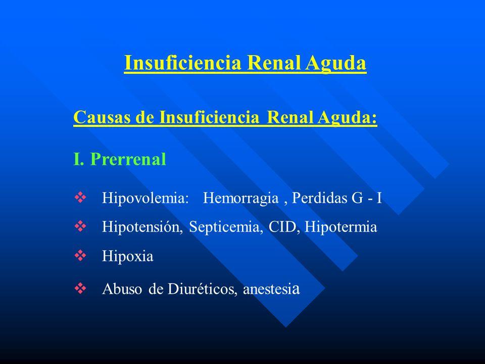Índices Urinarios para la Valoración Clínica de IRA y su diferenciación de Oliguria Funcional Adolescentes y niñosNeonatos Índices UrinariosOFIRAOFIRA FeNa (%) 2 3 U/P Osmolaridad> 1.3 1.3< 1.0 U/P Urea> 5* 5< 5 FeCl 5 U/P Creatinina> 40 30< 10 Sodio Urinario 40 40 Volumen UrinarioVariable VariableVariable Variable Prueba de Manitol(+)(-) Sedimento UrinarioNl yCilindros Ocasionalgranulosos Cilindroshialinos, Granulososdetritus Celulares, Eritrocitos *La relación U/P de urea en OF es > 5*