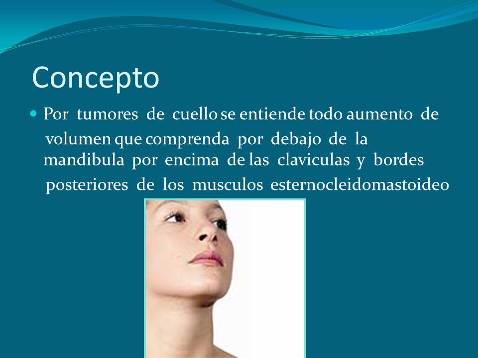 Concepto Por tumores de cuello se entiende todo aumento de volumen que comprenda por debajo de la mandibula por encima de las claviculas y bordes post