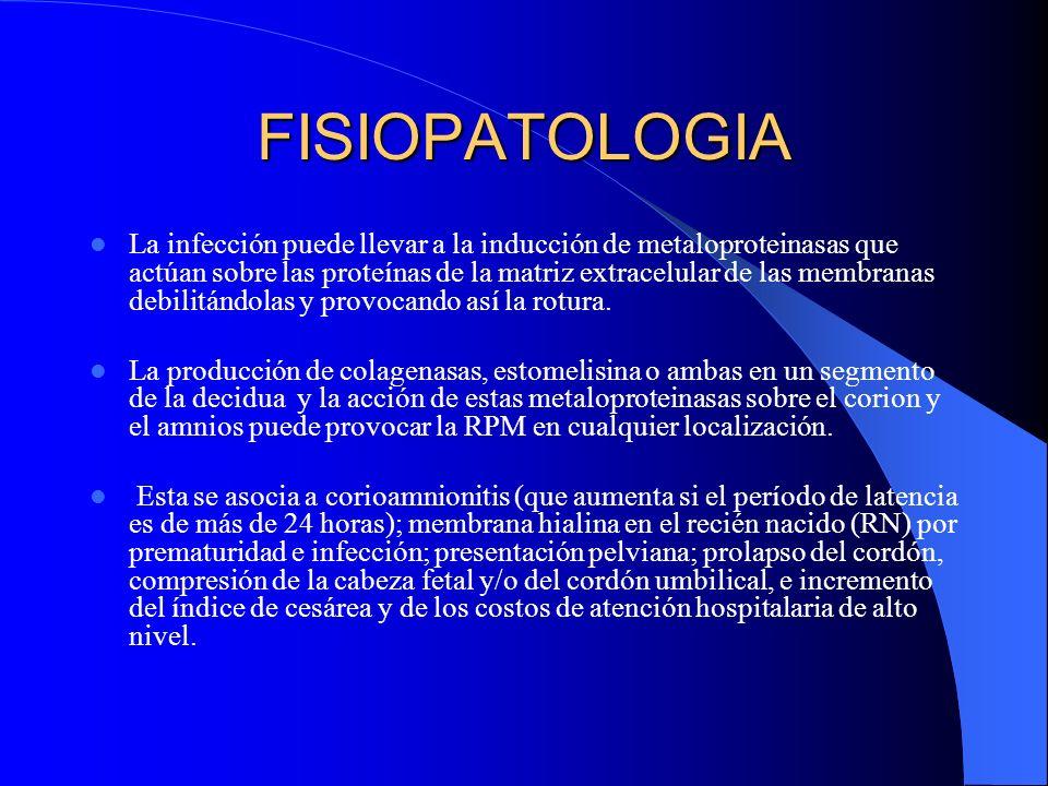 FISIOPATOLOGIA La infección puede llevar a la inducción de metaloproteinasas que actúan sobre las proteínas de la matriz extracelular de las membranas