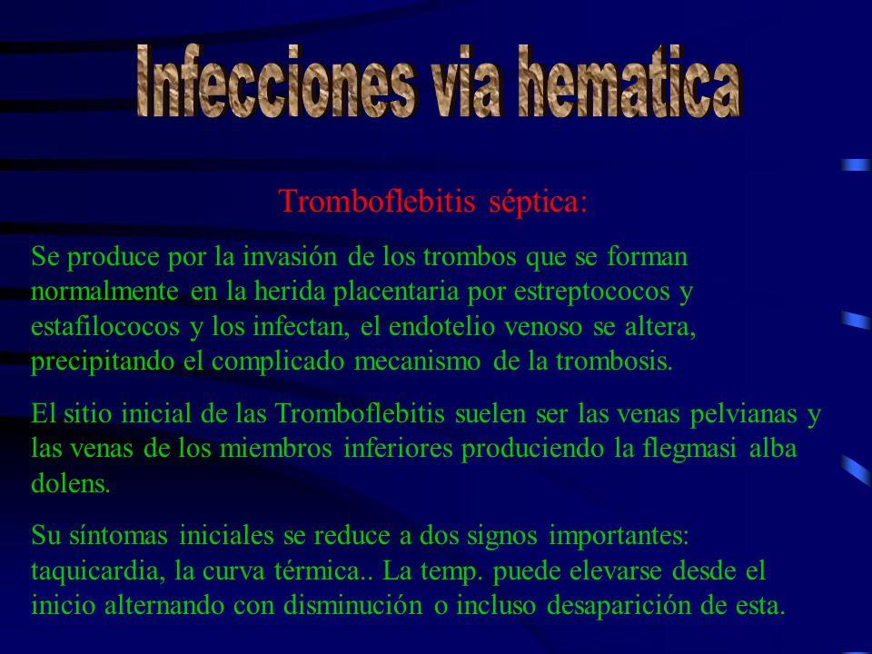 Tromboflebitis séptica: Se produce por la invasión de los trombos que se forman normalmente en la herida placentaria por estreptococos y estafilococos