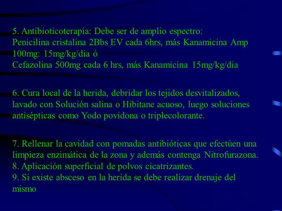 5. Antibioticoterapia: Debe ser de amplio espectro: Penicilina cristalina 2Bbs EV cada 6hrs, más Kanamicina Amp 100mg: 15mg/kg/dia ó Cefazolina 500mg