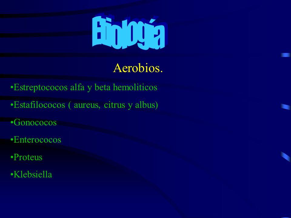 Aerobios. Estreptococos alfa y beta hemoliticos Estafilococos ( aureus, citrus y albus) Gonococos Enterococos Proteus Klebsiella