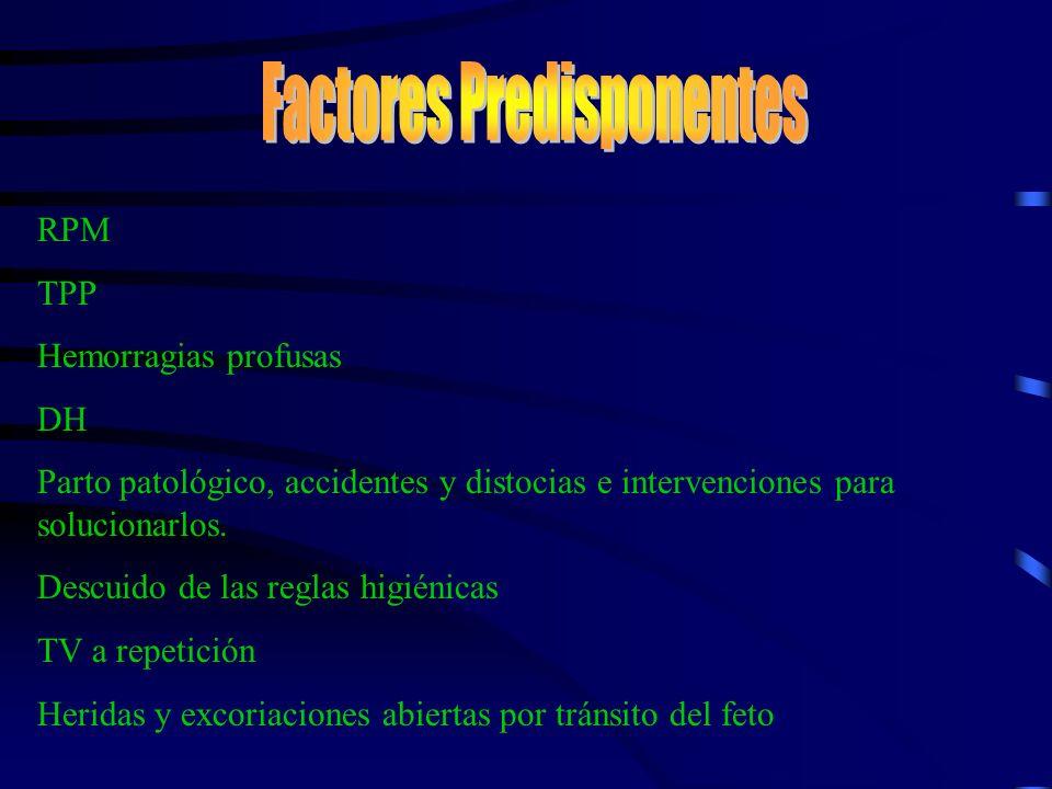 Infección puerperal localizada Vulvitis Vaginitis Cervicitis Endometritis