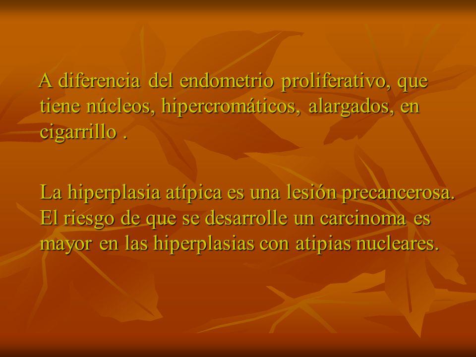 Hiperplasia normo típica.