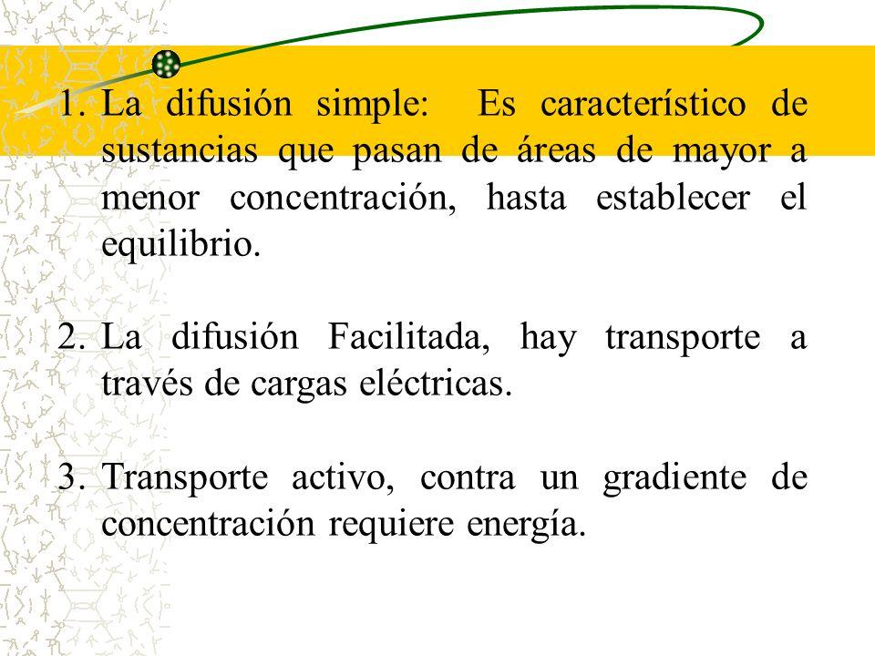 El intercambio materno fetal se da por: 1.- Difusión simple 2.- Transporte activo 3.- Fagocitosis 4.- Difusión facilitada 5.- Pinocitosis 6.- Migració
