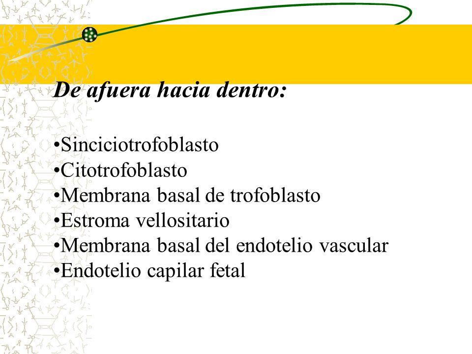 5.La pinocitosis, es una forma de endocitosis, donde el material se engloba en una muestra de liquido extracelular. Gases: El oxigeno, el dióxido de c