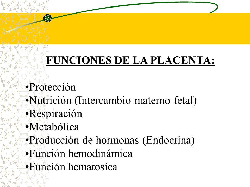 LA PLACENTA A TERMINO La placenta a termino tiene forma discoide, con un diámetro de 15 a 25cm y aproximadamente 3cm de espesor y pesa alrededor de 50
