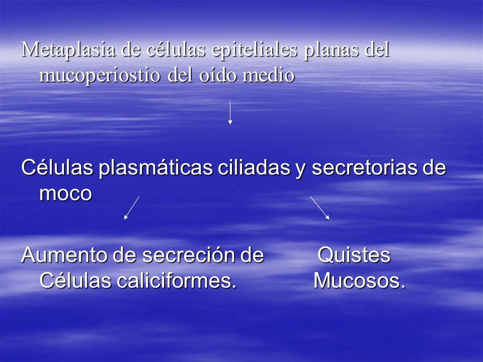 Secuelas Otitis adhesivas: disminución de presiones por otitis media recidivantes, fibrosis de caja timpánica.