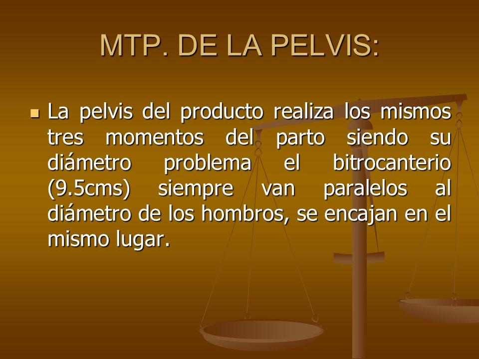 MTP. DE LA PELVIS: La pelvis del producto realiza los mismos tres momentos del parto siendo su diámetro problema el bitrocanterio (9.5cms) siempre van