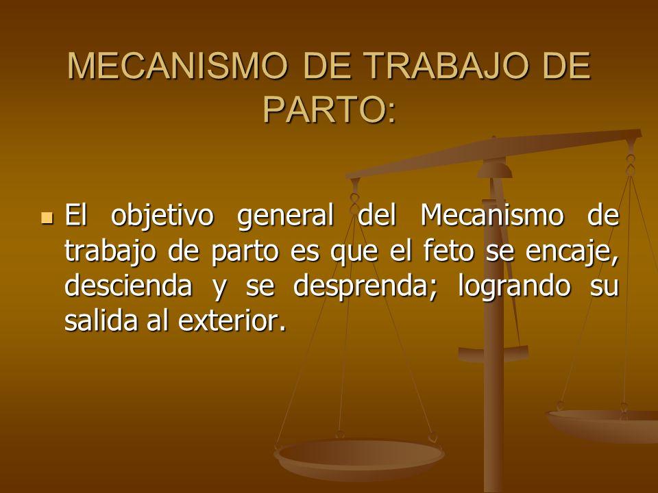MECANISMO DE TRABAJO DE PARTO: El objetivo general del Mecanismo de trabajo de parto es que el feto se encaje, descienda y se desprenda; logrando su s