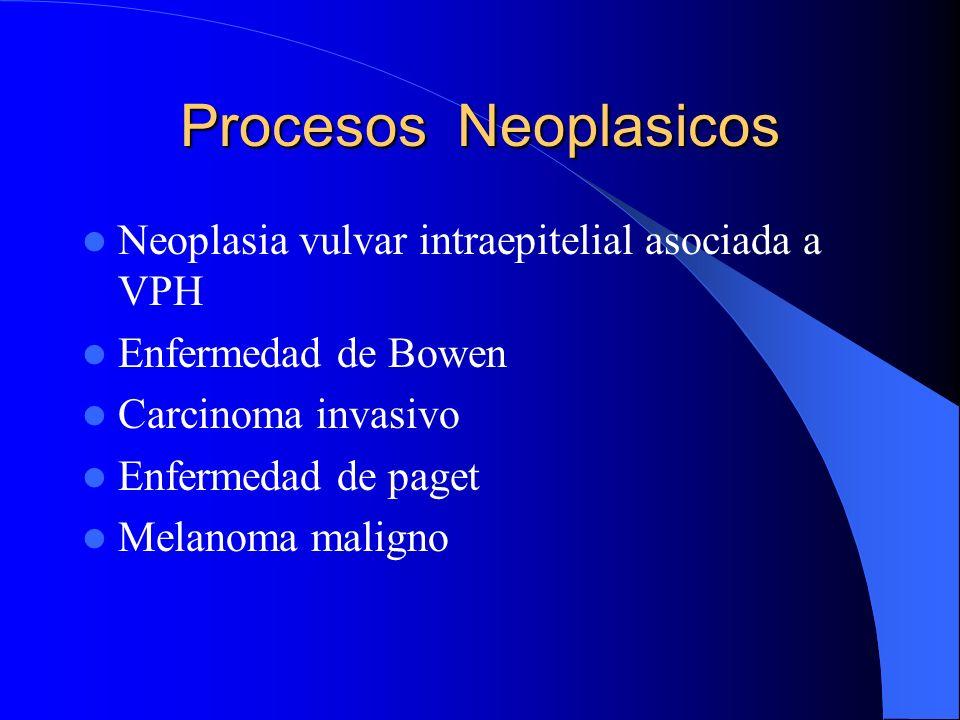 Procesos Neoplasicos Neoplasia vulvar intraepitelial asociada a VPH Enfermedad de Bowen Carcinoma invasivo Enfermedad de paget Melanoma maligno