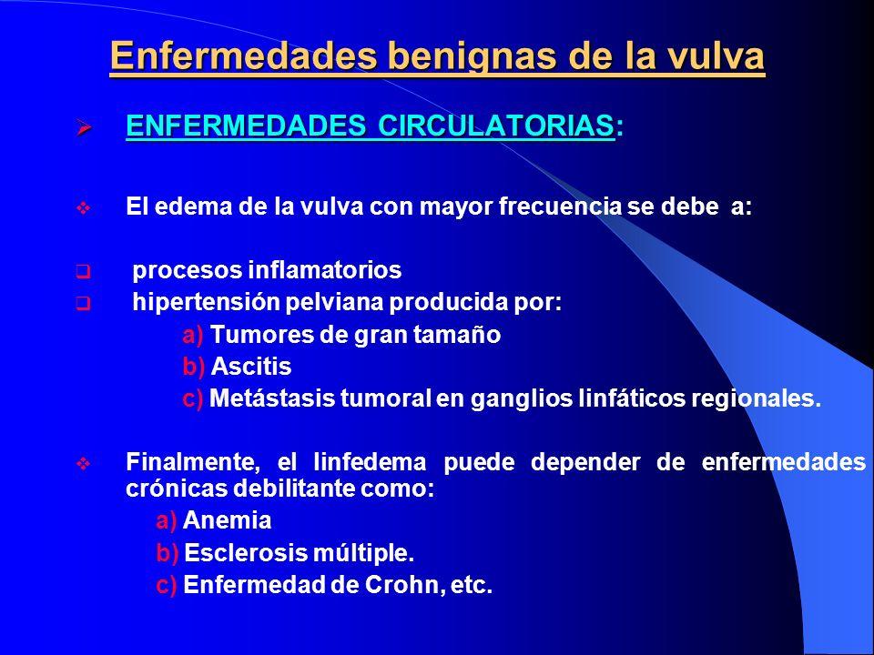Enfermedades benignas de la vulva ENFERMEDADES CIRCULATORIAS ENFERMEDADES CIRCULATORIAS: El edema de la vulva con mayor frecuencia se debe a: procesos