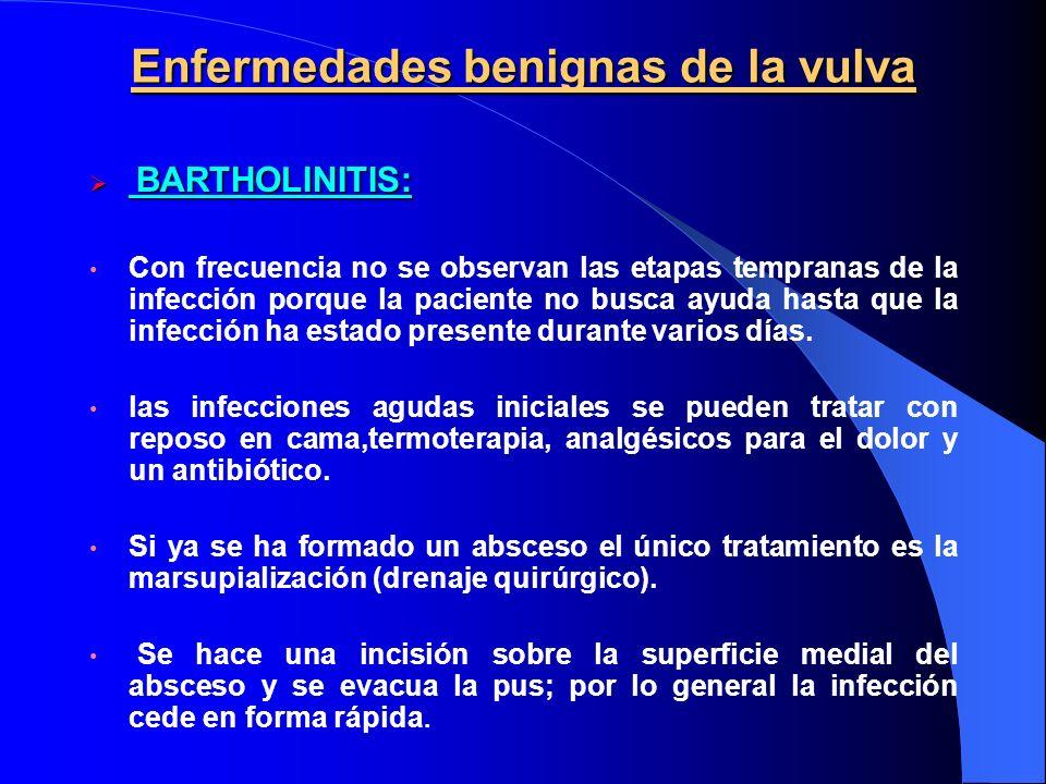 Enfermedades benignas de la vulva BARTHOLINITIS: BARTHOLINITIS: Con frecuencia no se observan las etapas tempranas de la infección porque la paciente