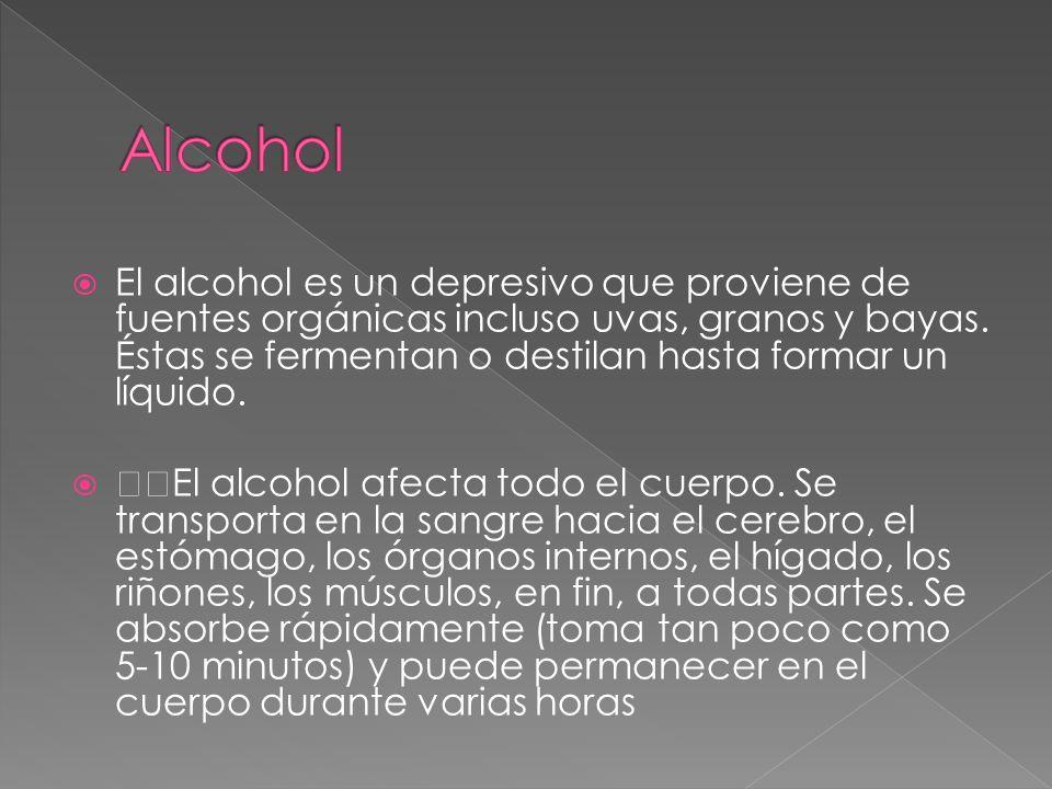 El alcohol es un depresivo que proviene de fuentes orgánicas incluso uvas, granos y bayas. Éstas se fermentan o destilan hasta formar un líquido. El a