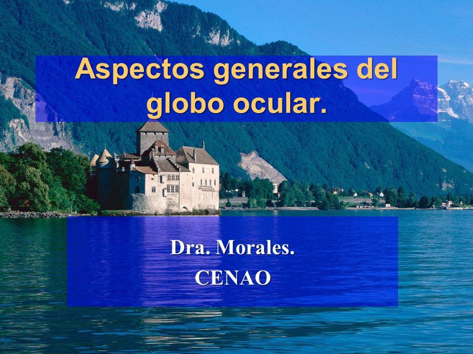 Aspectos generales del globo ocular. Dra. Morales. CENAO