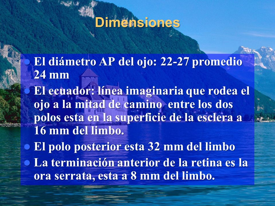 Dimensiones El diámetro AP del ojo: 22-27 promedio 24 mm El diámetro AP del ojo: 22-27 promedio 24 mm El ecuador: línea imaginaria que rodea el ojo a