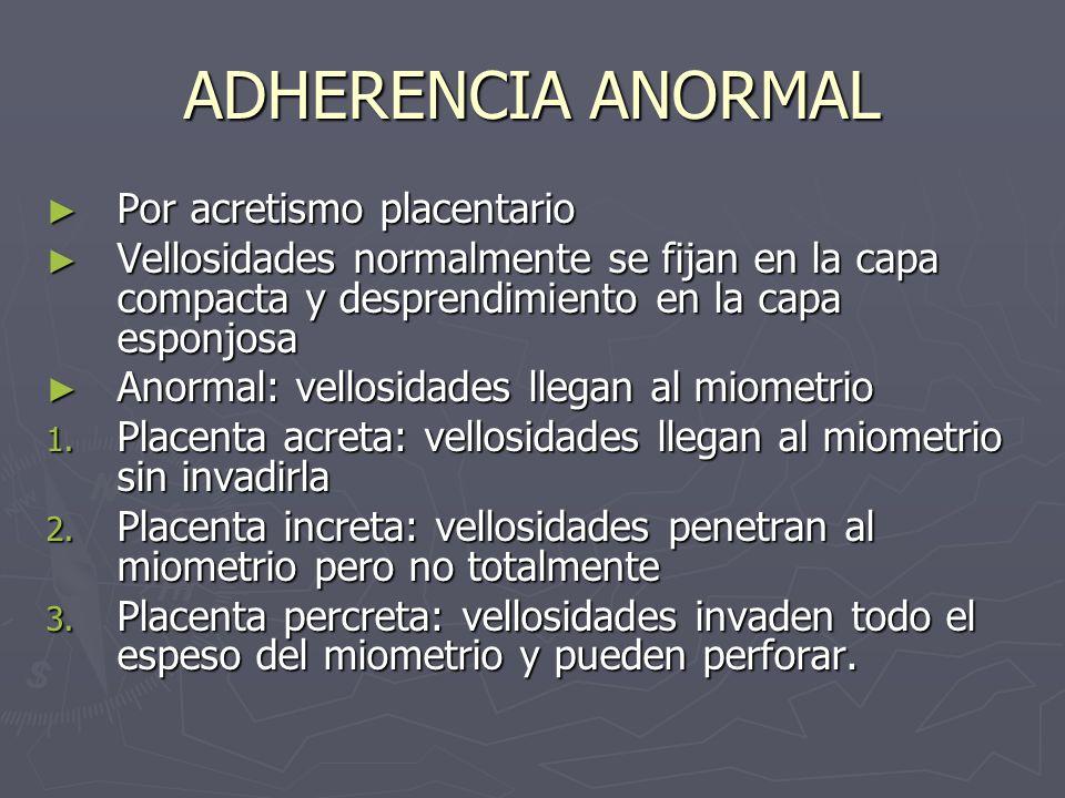 ADHERENCIA ANORMAL Por acretismo placentario Por acretismo placentario Vellosidades normalmente se fijan en la capa compacta y desprendimiento en la c