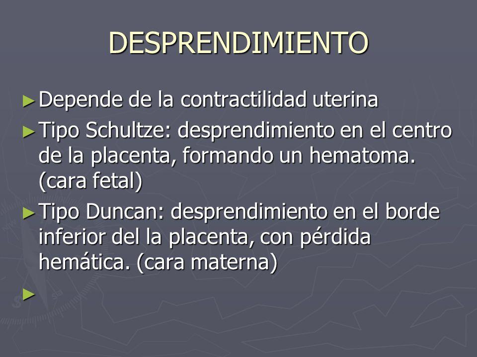 DESPRENDIMIENTO Depende de la contractilidad uterina Depende de la contractilidad uterina Tipo Schultze: desprendimiento en el centro de la placenta,