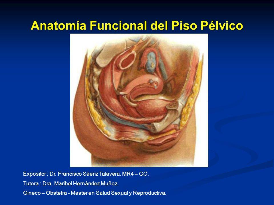 Anatomía Funcional del Piso Pélvico Expositor : Dr. Francisco Sáenz Talavera. MR4 – GO. Tutora : Dra. Maribel Hernández Muñoz. Gineco – Obstetra - Mas