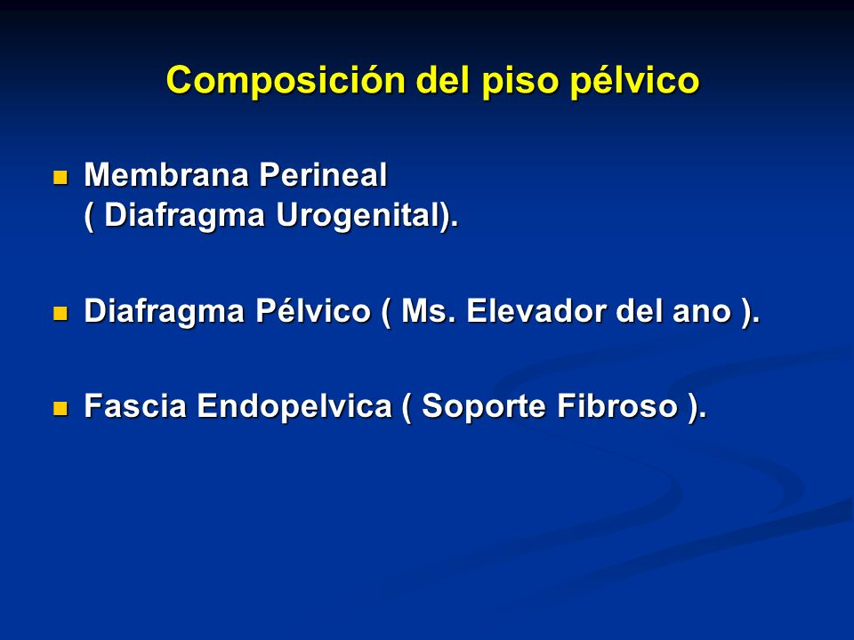 Composición del piso pélvico Composición del piso pélvico Membrana Perineal ( Diafragma Urogenital).