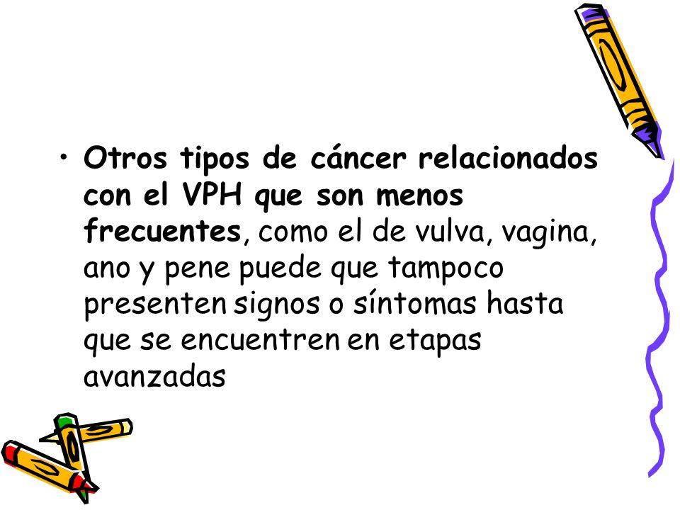 Otros tipos de cáncer relacionados con el VPH que son menos frecuentes, como el de vulva, vagina, ano y pene puede que tampoco presenten signos o sínt