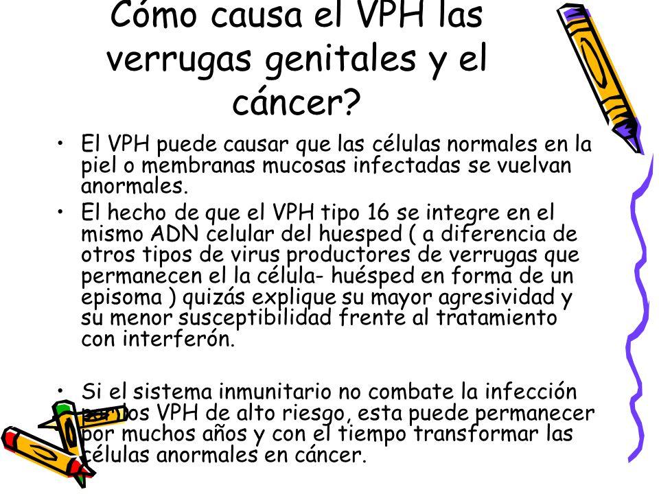 Cómo causa el VPH las verrugas genitales y el cáncer? El VPH puede causar que las células normales en la piel o membranas mucosas infectadas se vuelva