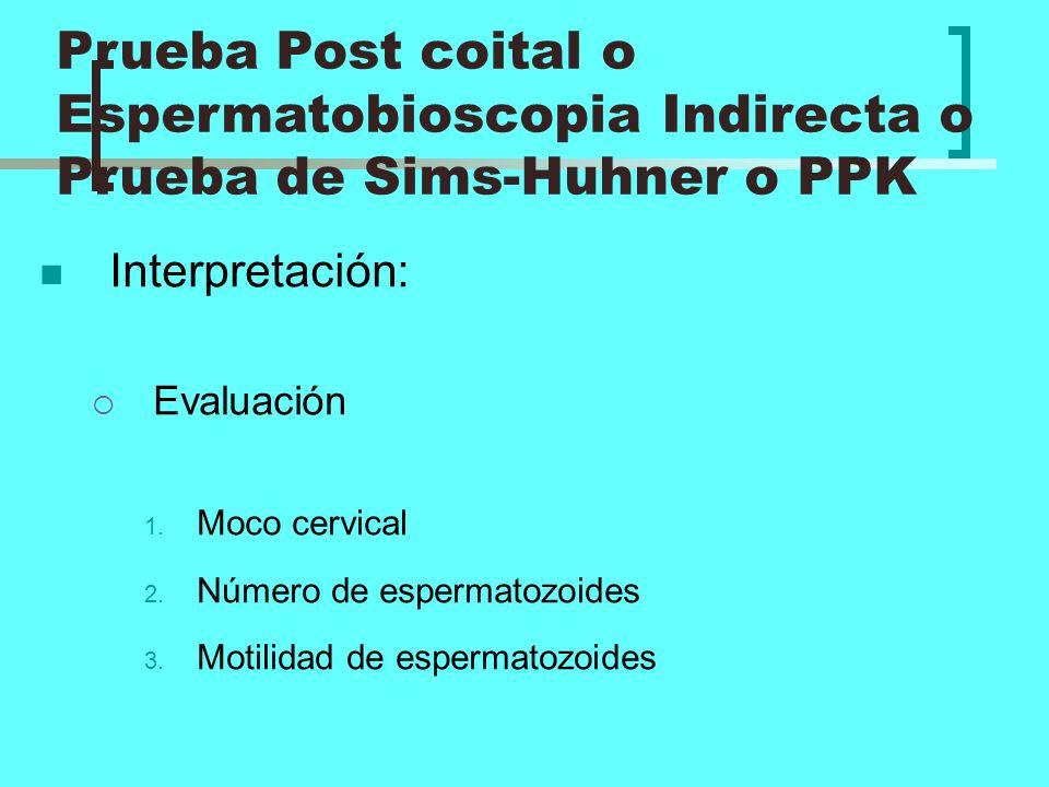 Interpretación: Evaluación 1. Moco cervical 2. Número de espermatozoides 3. Motilidad de espermatozoides Prueba Post coital o Espermatobioscopia Indir