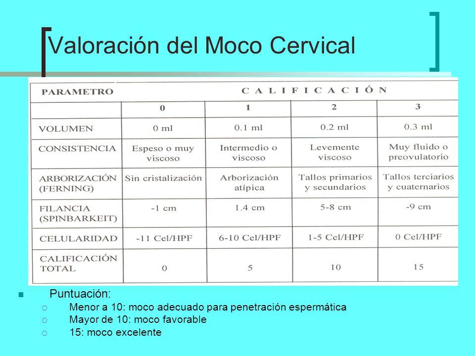 Puntuación: Menor a 10: moco adecuado para penetración espermática Mayor de 10: moco favorable 15: moco excelente Valoración del Moco Cervical