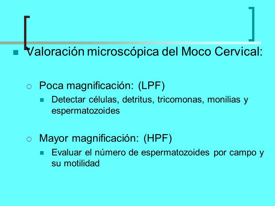 Valoración microscópica del Moco Cervical: Poca magnificación: (LPF) Detectar células, detritus, tricomonas, monilias y espermatozoides Mayor magnific