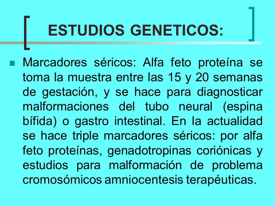 ESTUDIOS GENETICOS: Marcadores séricos: Alfa feto proteína se toma la muestra entre las 15 y 20 semanas de gestación, y se hace para diagnosticar malf
