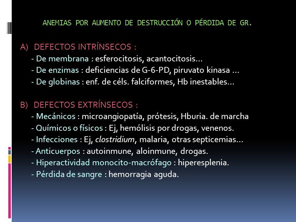 ANEMIAS POR AUMENTO DE DESTRUCCIÓN O PÉRDIDA DE GR. A) DEFECTOS INTRÍNSECOS : - De membrana : esferocitosis, acantocitosis... - De enzimas : deficienc