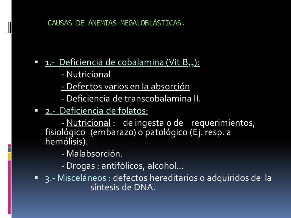 CAUSAS DE ANEMIAS MEGALOBLÁSTICAS. 1.- Deficiencia de cobalamina (Vit B 12 ): - Nutricional - Defectos varios en la absorción - Deficiencia de transco