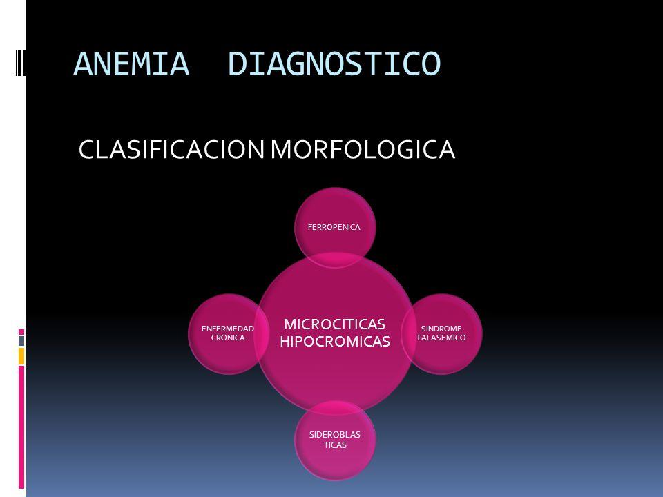 ANEMIA DIAGNOSTICO CLASIFICACION MORFOLOGICA MICROCITICAS HIPOCROMICAS FERROPENICA SINDROME TALASEMICO SIDEROBLAS TICAS ENFERMEDAD CRONICA