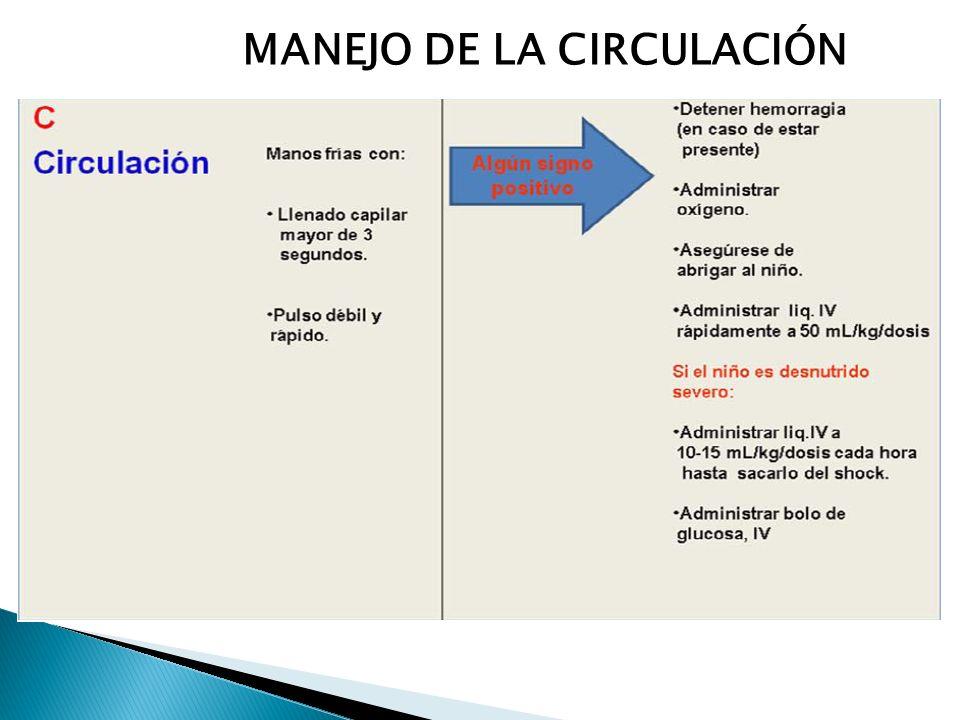 MANEJO DE LA CIRCULACIÓN