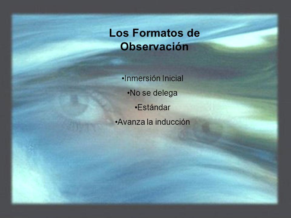 Los Formatos de Observación Inmersión Inicial No se delega Estándar Avanza la inducción