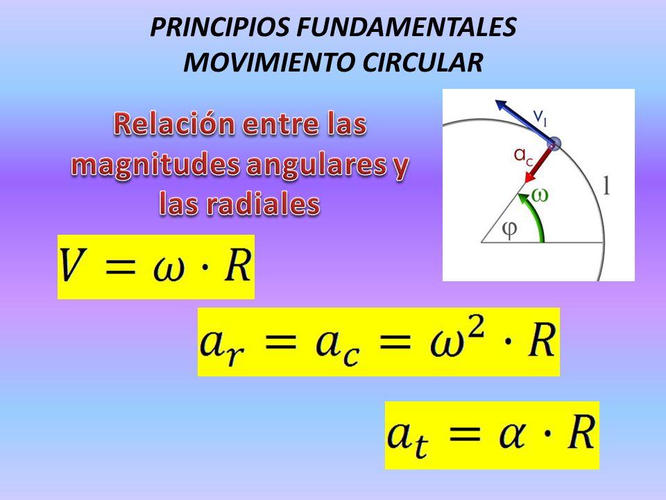 PRINCIPIOS FUNDAMENTALES MOVIMIENTO CIRCULAR