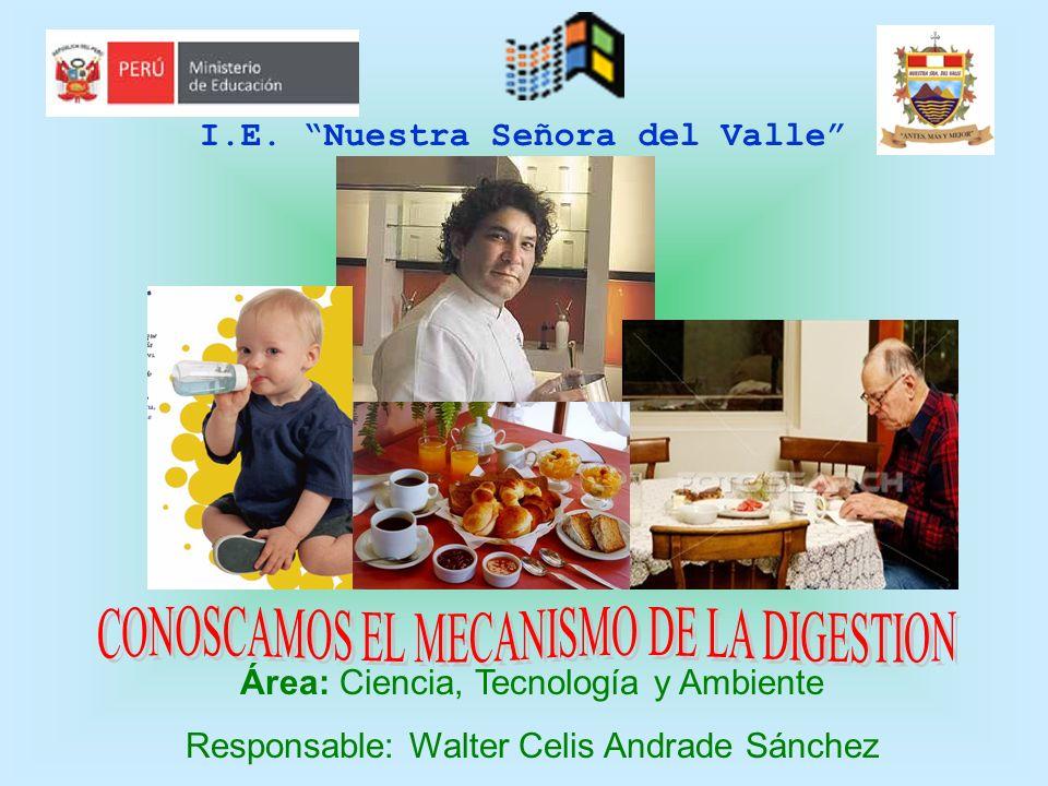 I.E. Nuestra Señora del Valle Área: Ciencia, Tecnología y Ambiente Responsable: Walter Celis Andrade Sánchez