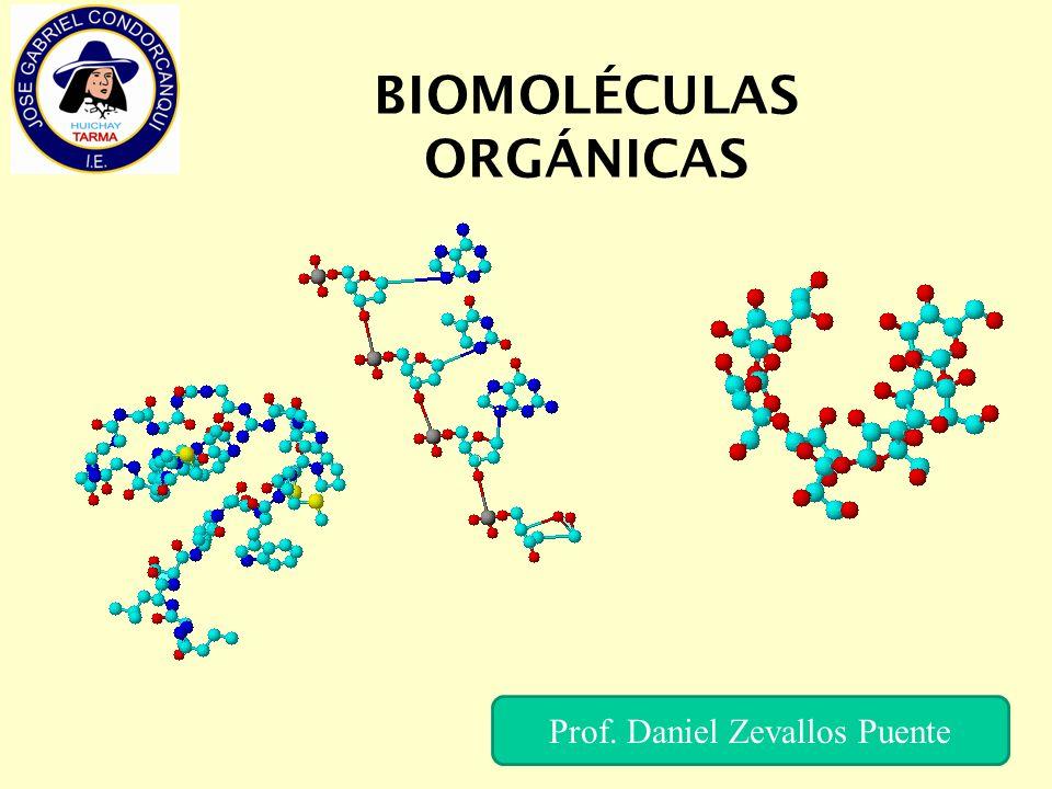 BIOMOLÉCULAS ORGÁNICAS Prof. Daniel Zevallos Puente