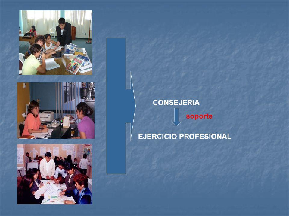 CONSEJERIA soporte EJERCICIO PROFESIONAL