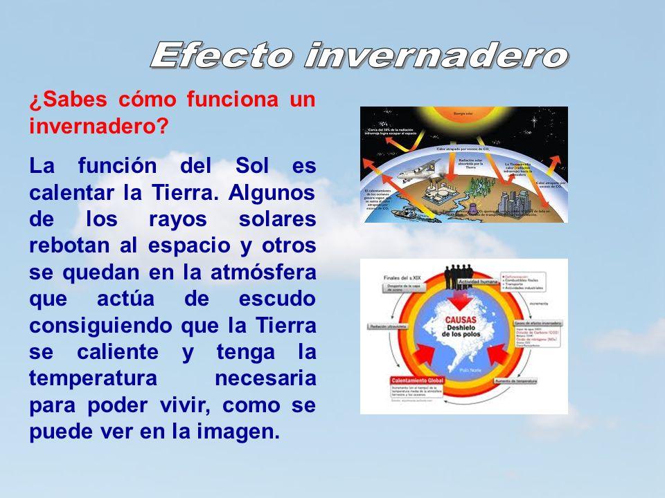5 5 ¿Sabes cómo funciona un invernadero? La función del Sol es calentar la Tierra. Algunos de los rayos solares rebotan al espacio y otros se quedan e