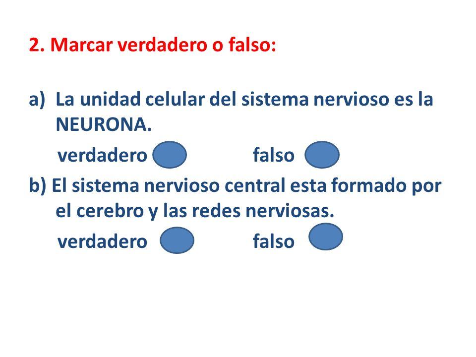 2. Marcar verdadero o falso: a)La unidad celular del sistema nervioso es la NEURONA. verdadero falso b) El sistema nervioso central esta formado por e
