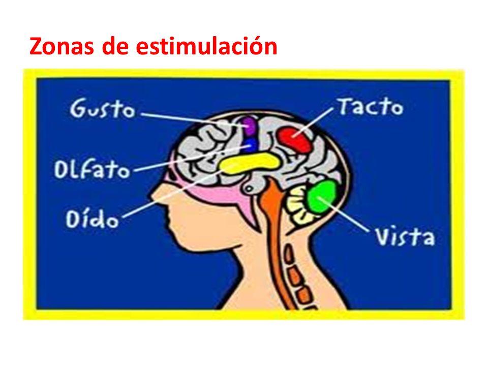 Zonas de estimulación