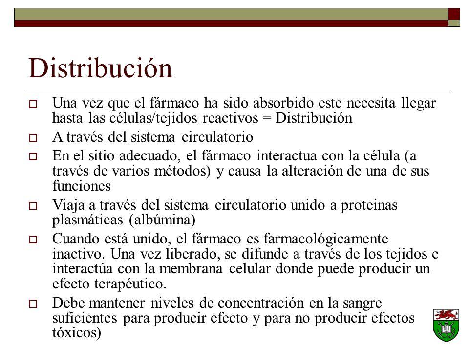 Distribución Una vez que el fármaco ha sido absorbido este necesita llegar hasta las células/tejidos reactivos = Distribución A través del sistema circulatorio En el sitio adecuado, el fármaco interactua con la célula (a través de varios métodos) y causa la alteración de una de sus funciones Viaja a través del sistema circulatorio unido a proteinas plasmáticas (albúmina) Cuando está unido, el fármaco es farmacológicamente inactivo.
